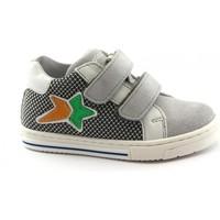 Zapatos Niño Zapatillas bajas Balocchi BAL-E20-103292-CE-a Grigio
