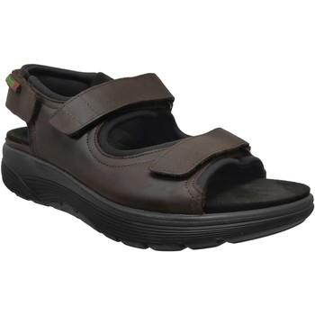 Zapatos Hombre Sandalias de deporte Sano De Mephisto Wilfried Castaño