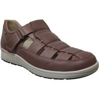 Zapatos Hombre Sandalias Mephisto Vilson Cuero marrón medio