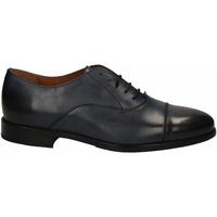 Zapatos Hombre Derbie Frau SIENA blu