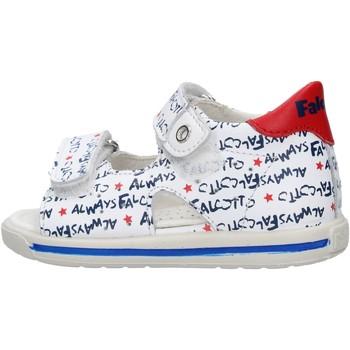 Zapatos Niño Zapatos para el agua Falcotto - Sandalo bianco/blu ARIEL-1N07 BIANCO