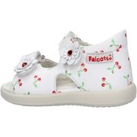Zapatos Niño Zapatos para el agua Falcotto - Sandalo bianco SHAMAL-0N01 BIANCO