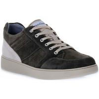 Zapatos Hombre Zapatillas bajas Nero Giardini NERO GIARDINI 503 COLORADO BOSCO Verde
