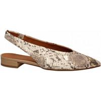Zapatos Mujer Bailarinas-manoletinas Andrea Zali SUREMO mandorla