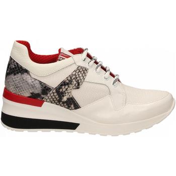 Zapatos Mujer Zapatillas bajas Tosca Blu PRIMULA co4-roccia