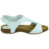 Zapatos Mujer Sandalias Interbios Sandalias bios blanc Azul