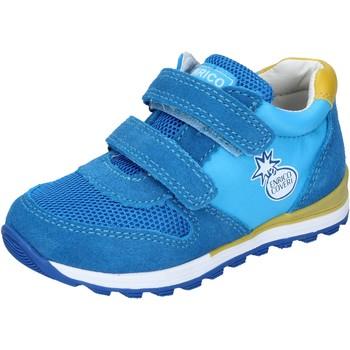 Zapatos Niño Zapatillas bajas Enrico Coveri BN680 azul claro