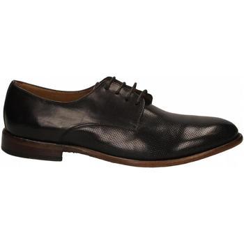 Zapatos Hombre Derbie Calpierre ANICOL cioccolato