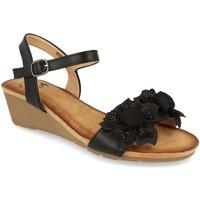 Zapatos Mujer Sandalias Colilai H090 Negro