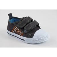 Zapatos Niño Zapatillas bajas Katini Lona niño  17818 kfy gris Gris