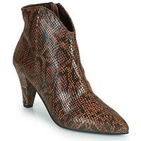 Zapatos Mujer Botines Ravel LEVISA Serpiente
