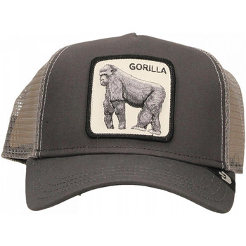 Accesorios textil Hombre Gorra Goorin Bros KING OF THE JUNGLE grey