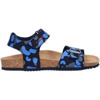 Zapatos Niño Sandalias Geox J926XA 000CE J STORM Azul