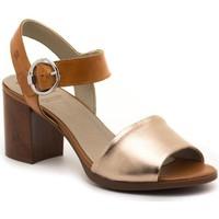 Zapatos Mujer Sandalias Dorking D8174-LATQ Marrón