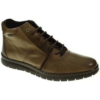 Zapatos Hombre Botas de caña baja Baerchi 5313 Marrón
