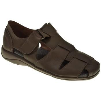 Zapatos Hombre Sandalias Duendy 951 Marrón