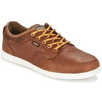 Zapatos Hombre Zapatillas bajas Etnies DORY Marrón