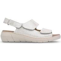 Zapatos Mujer Sandalias Saguy's S SAGUYS PLANTILLAS W LERMA BEIGE