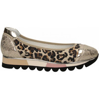 Zapatos Mujer Bailarinas-manoletinas Le Pepé JAGUAR beige