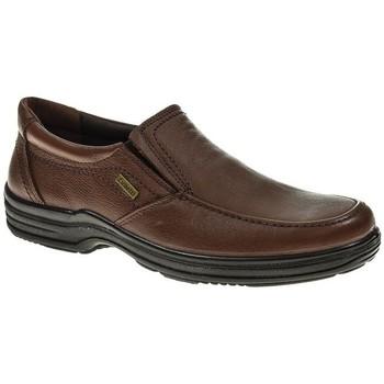 Zapatos Hombre Mocasín Luisetti 20400 Marrón