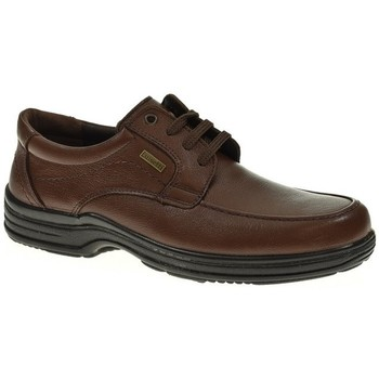 Zapatos Hombre Derbie Luisetti CORDON/BLUCHER  CUERO Marrón