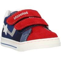 Zapatos Niños Zapatillas bajas Balocchi 103202 Multicolor