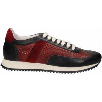 Zapatos Hombre Zapatillas bajas Brecos SIER blu