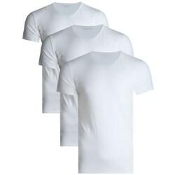 textil Hombre Camisetas manga corta Tommy Hilfiger 3PAK Blanco