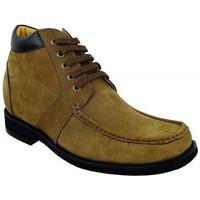 Zapatos Botas de caña baja Zerimar COPENHAGUE Marrón