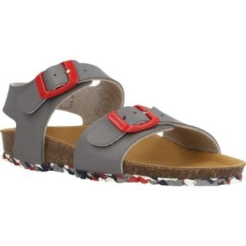 Zapatos Niño Sandalias Garvalin 202475 Gris