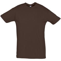 textil Hombre Camisetas manga corta Sols REGENT COLORS MEN Marr?n