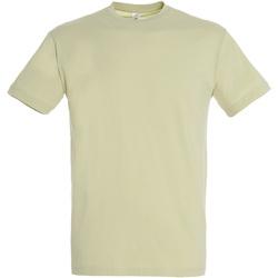 textil Hombre Camisetas manga corta Sols REGENT COLORS MEN Verde