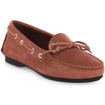 Zapatos Mujer Mocasín Frau CASTORINO TERRA Marrone