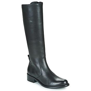 Zapatos Mujer Botas urbanas Myma KOALA Negro