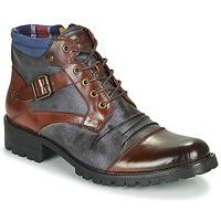 Zapatos Hombre Botas de caña baja Kdopa SLASH Camel / Azul
