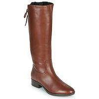 Zapatos Mujer Botas urbanas Geox FELICITY Marrón