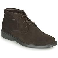Zapatos Hombre Botas de caña baja Geox BRAYDEN 2FIT ABX Marrón