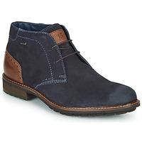 Zapatos Hombre Botas de caña baja Josef Seibel JASPER 51 Marino