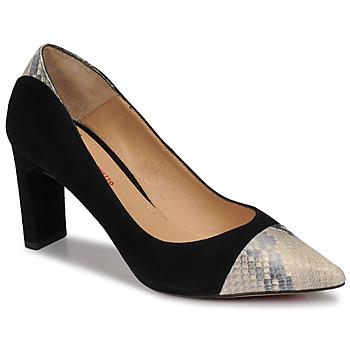 Zapatos Mujer Zapatos de tacón Perlato JAMIRI Negro / Beige