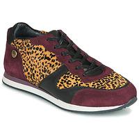 Zapatos Mujer Zapatillas bajas Pataugas IDOL/I F4E Burdeo / Leopardo