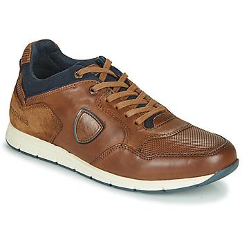 Zapatos Hombre Zapatillas bajas Redskins SARIETTE Cognac