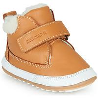 Zapatos Niños Botas de caña baja Robeez MIKRO SHOW Cognac