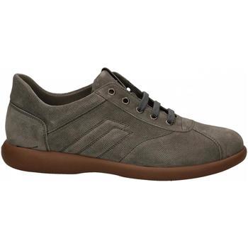 Zapatos Hombre Zapatillas bajas Frau SUEDE roccia