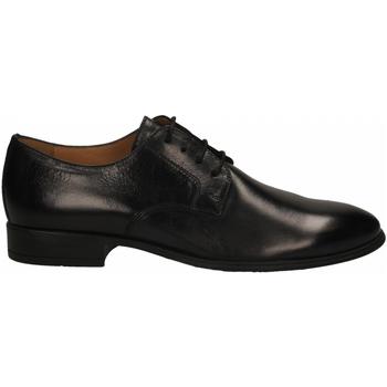 Zapatos Hombre Derbie Antica Cuoieria SIRIANA nero