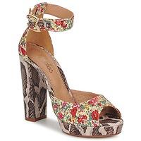 Zapatos Mujer Sandalias Maloles PIRIPI Multiple