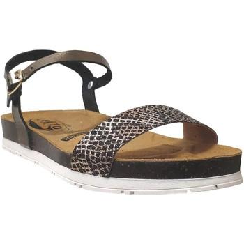 Zapatos Mujer Sandalias Plakton Garden Bronce metalizado