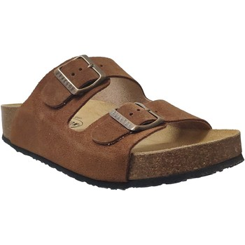 Zapatos Mujer Zuecos (Mules) Plakton Cp beta Terciopelo marrón