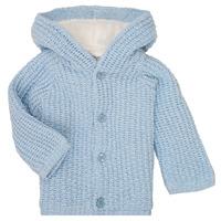 textil Niño Abrigos Carrément Beau Y96053 Azul