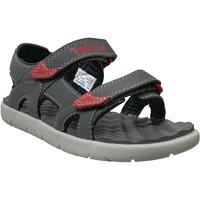 Zapatos Niños Sandalias de deporte Timberland Perkins row gris
