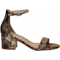 Zapatos Mujer Sandalias Steve Madden IRENEE snake